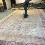 Commercial Carpet Cleaning Everett
