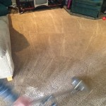 Dirty-Carpet-Cleaned-Everett