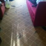 Everett-Carpet-Clean-before