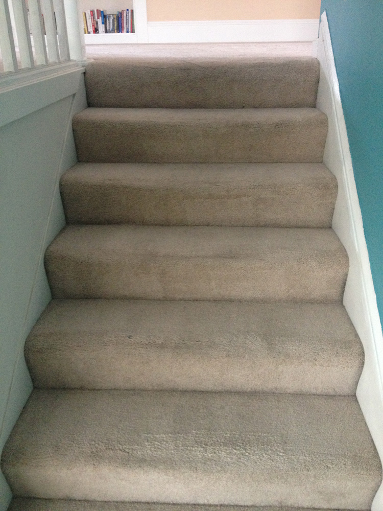 Best Carpeting For Stairs And Landings Credainatcon